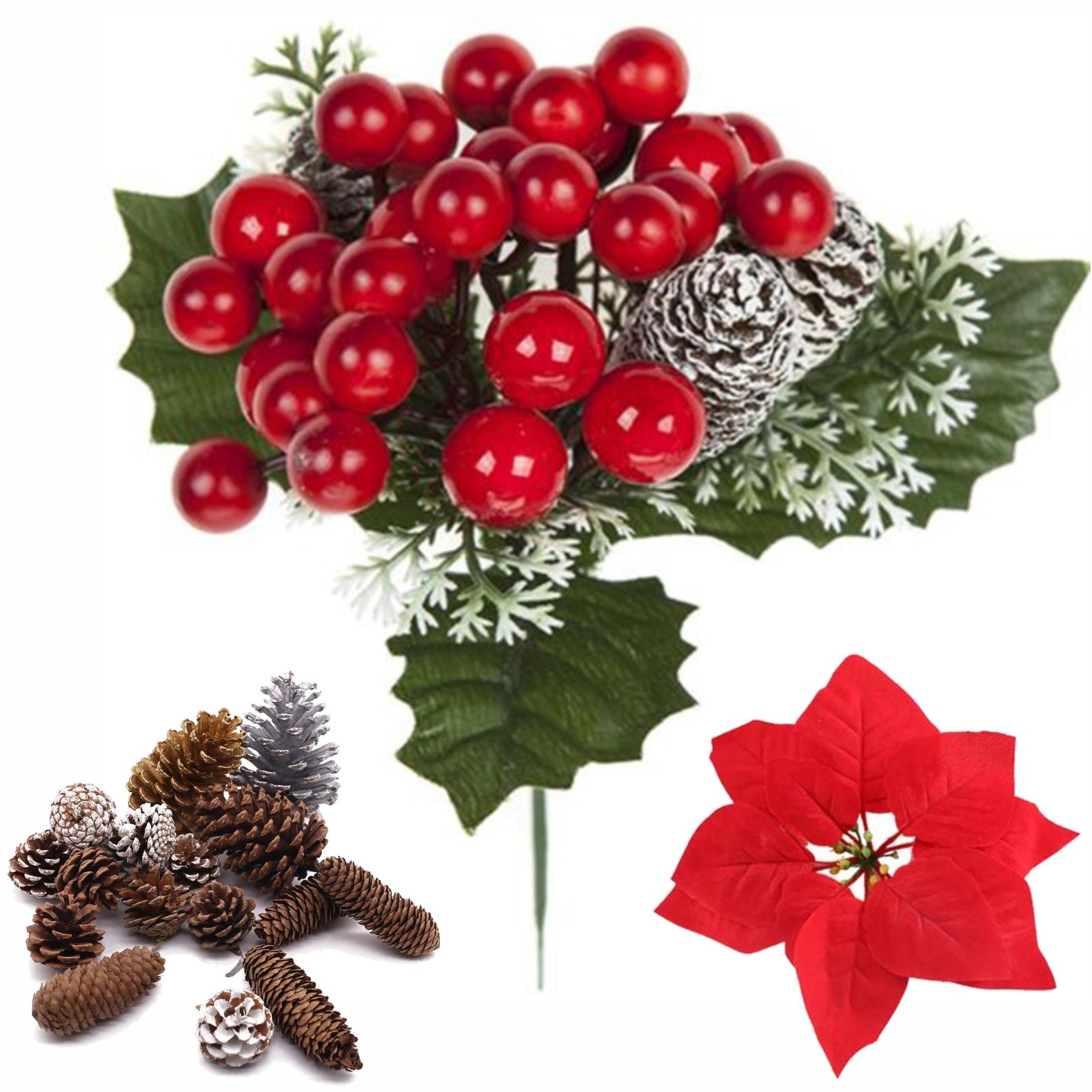 Conuri, Fructe, Crăciunițe